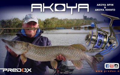 Predox Akoya