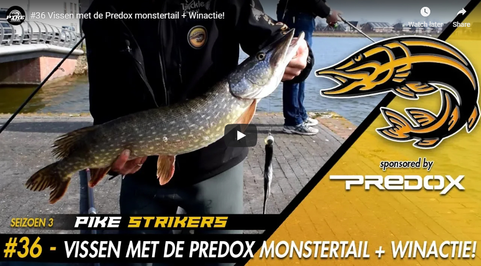 Pike Strikers vissen met de Predox Monstertail